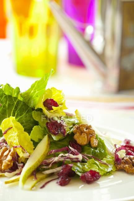 Insalata di Romaine con cavolo — Foto stock