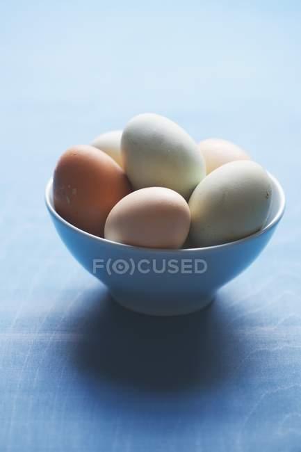 Oeufs frais de couleur mixte — Photo de stock