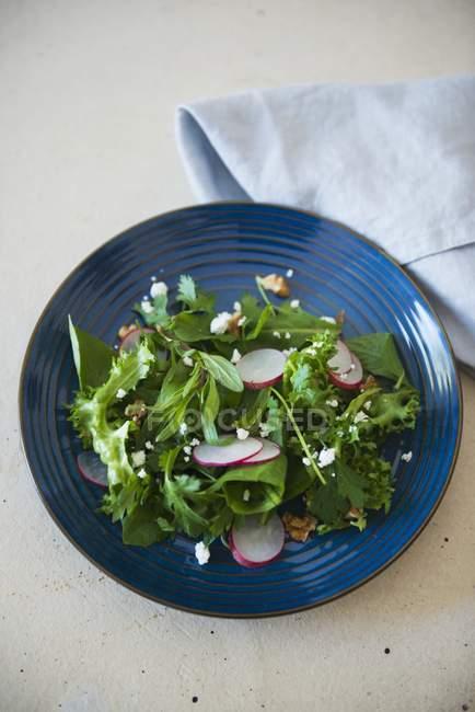 Ensalada de hierbas frescas y rábano - foto de stock