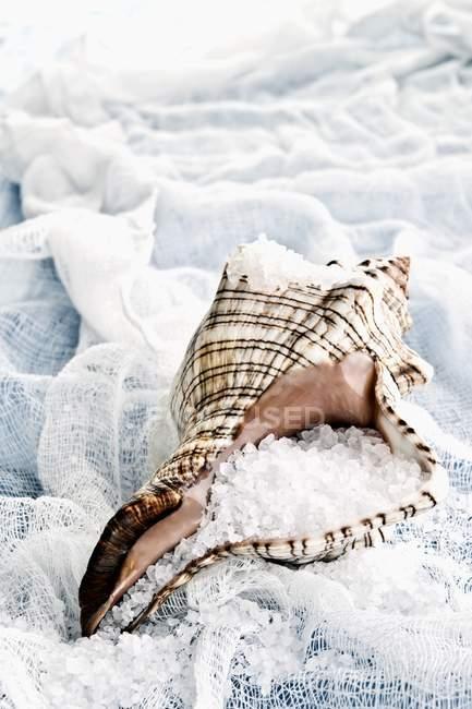 Vista del primo piano di sale marino in una shell su garza bianca — Foto stock