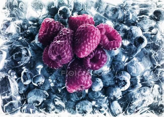 Малина на замороженные ягоды — стоковое фото
