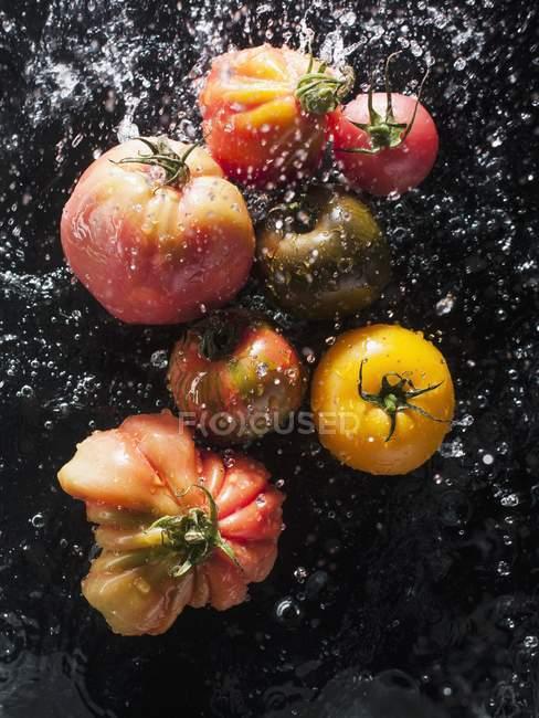 Vari pomodori colorati in acqua — Foto stock