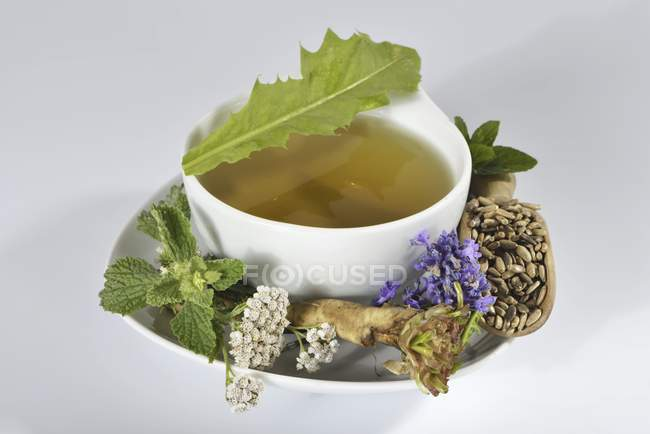 Tisane dans une tasse avec des herbes fraîches — Photo de stock