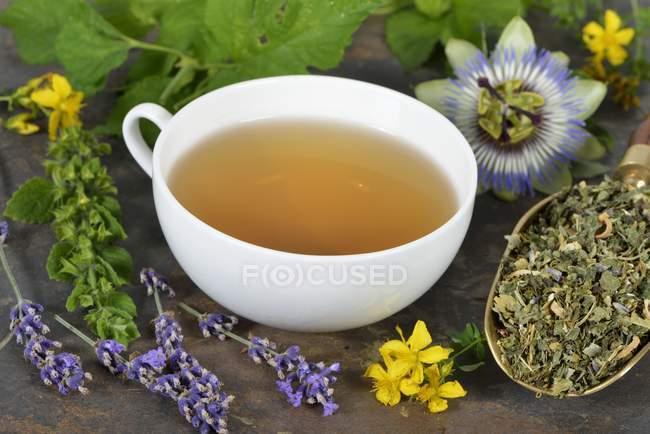 Tisane aux ingrédients — Photo de stock