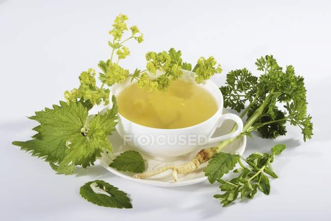 Cup of herbal tea with ingredients — Stock Photo