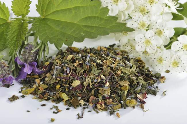 Mélange de tisane avec GUI — Photo de stock