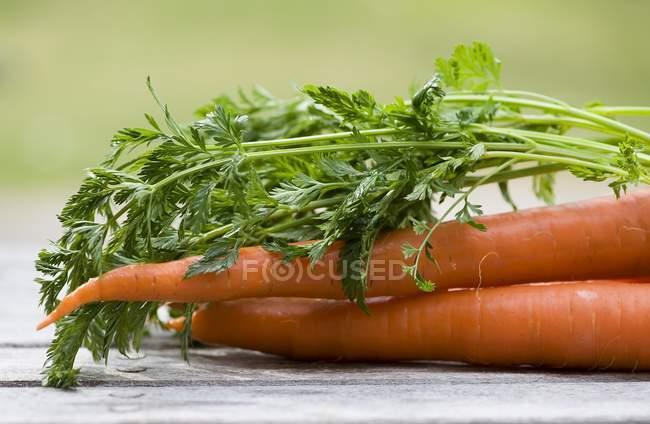 Zanahorias frescas con tapas - foto de stock