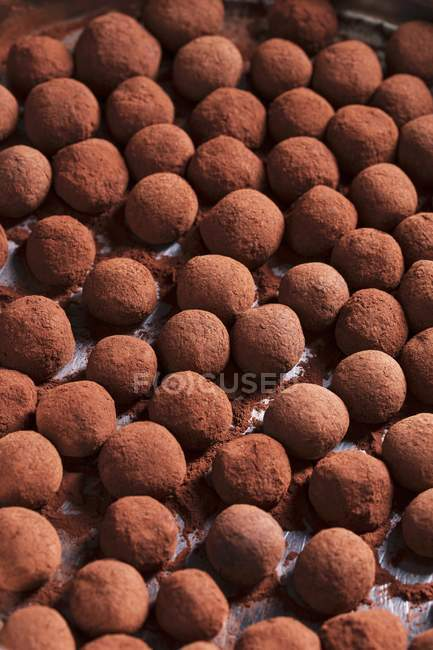 Closeup view of chocolate powdered marzipan truffles — Stock Photo