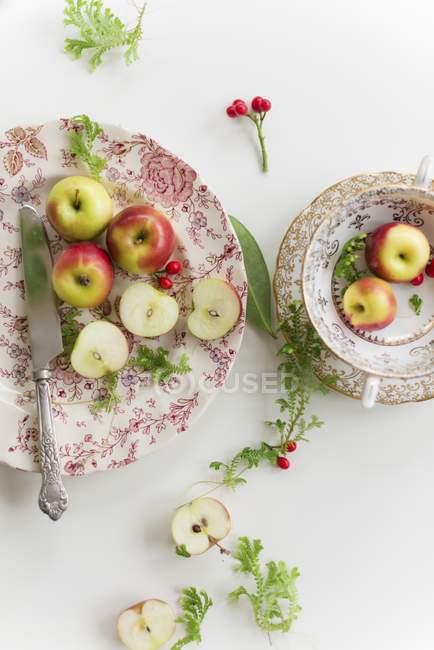 Розовые яблоки леди — стоковое фото