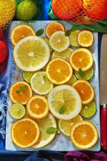 Цитрусові фрукти скибочки — стокове фото
