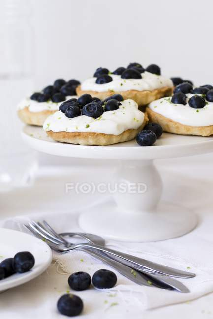 Tartlets with cream cheese and blueberries — Stock Photo