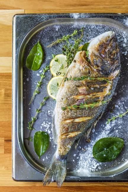 Стопу seab печеным с травами и лимоном — стоковое фото