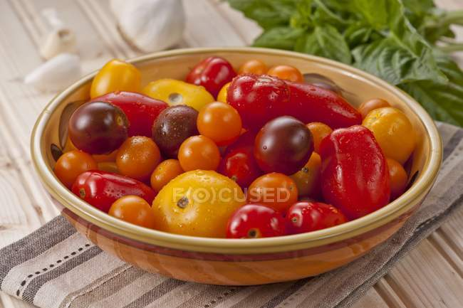 Различные красочные помидоры — стоковое фото