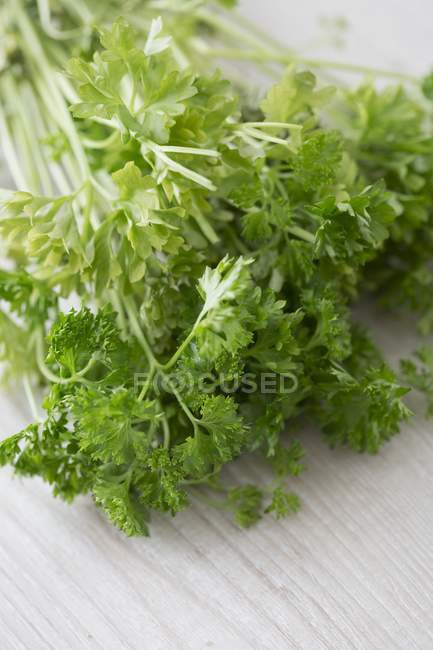 Bunch of Fresh parsley — Foto stock