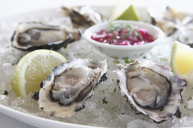 Oysters on ice with lime slices — Stock Photo