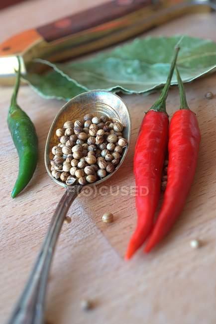 Malaguetas e sementes de coentro — Fotografia de Stock