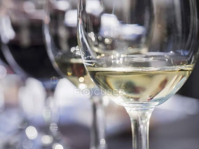 Glasses of wine served for tasting session — Stock Photo
