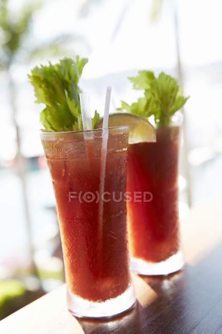 Dois Bloody Mary em um bar de praia em óculos com palha — Fotografia de Stock