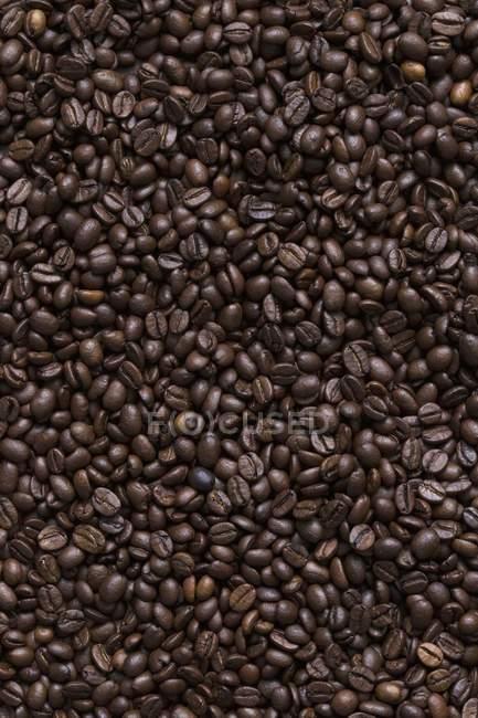 Темний кави в зернах — стокове фото