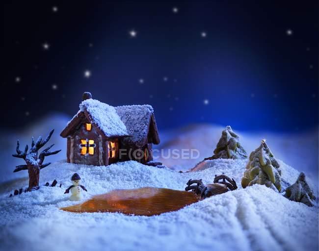 Paisagem de inverno, feita de açúcar — Fotografia de Stock