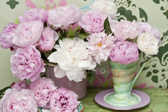 Pink and white peonies in a retro vase in front of a wall painted with a stencil pattern — Stock Photo