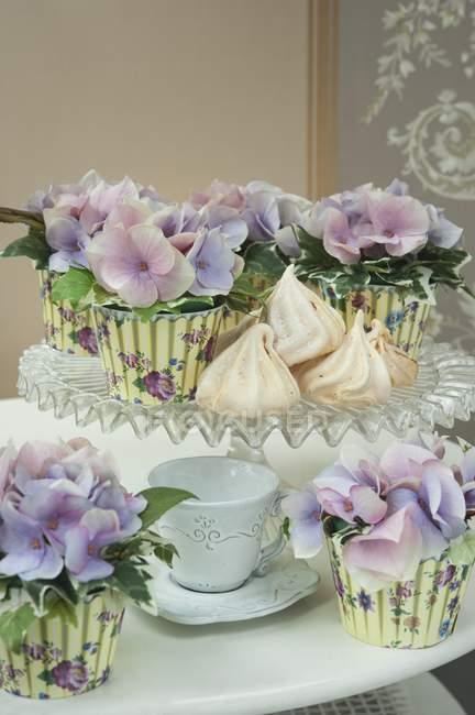 Цветы фиолетовые гортензии — стоковое фото