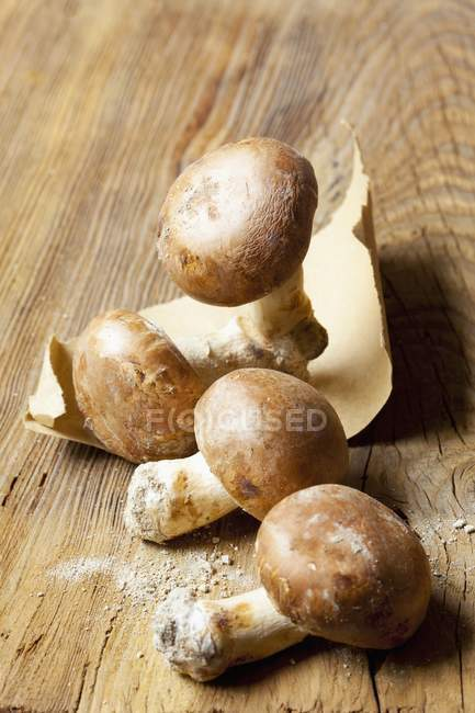 Champiñones frescos marrón - foto de stock