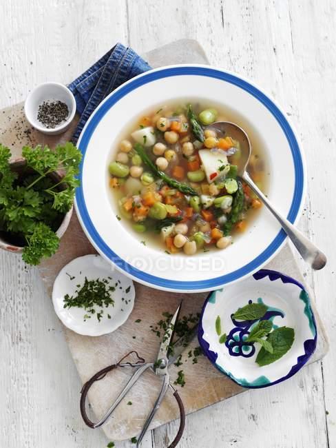 Gemüsesuppe mit Kichererbsen und Kräutern — Stockfoto
