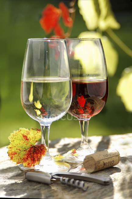 Óculos com vinho tinto e branco — Fotografia de Stock