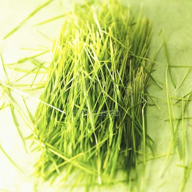 Нарезанный пырей на зеленой поверхности — стоковое фото