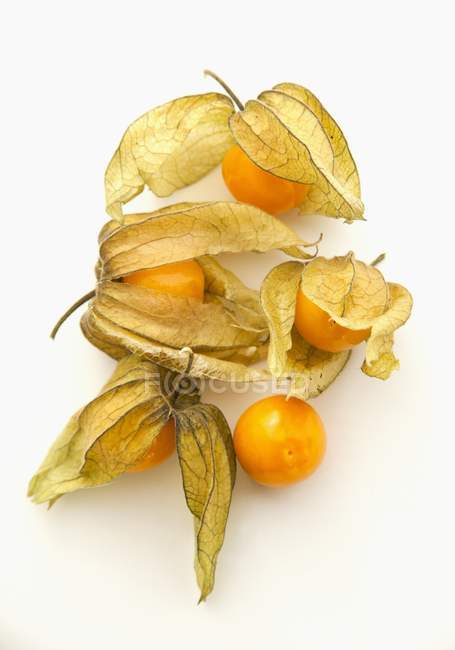 Physalis fruits on a white surface — Stock Photo