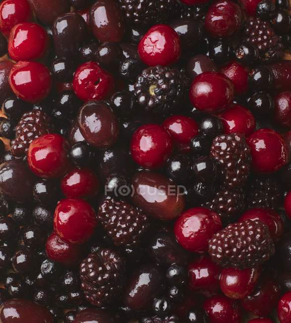 Свежие вишни и ежевики — стоковое фото