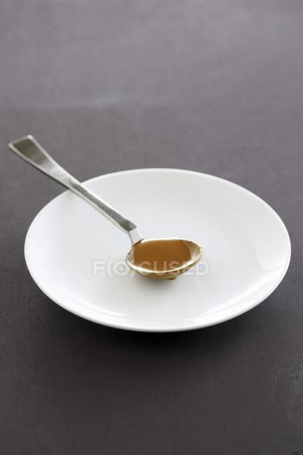 Spoonful of gravy on a plate — Stock Photo