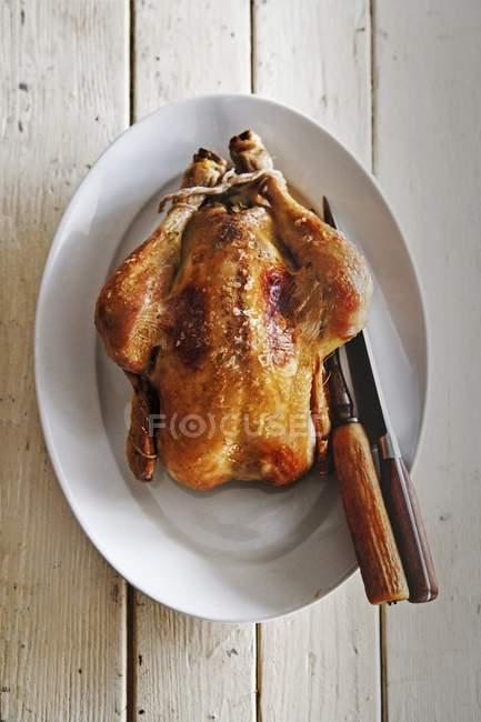 Pollo asado con cuchillos - foto de stock