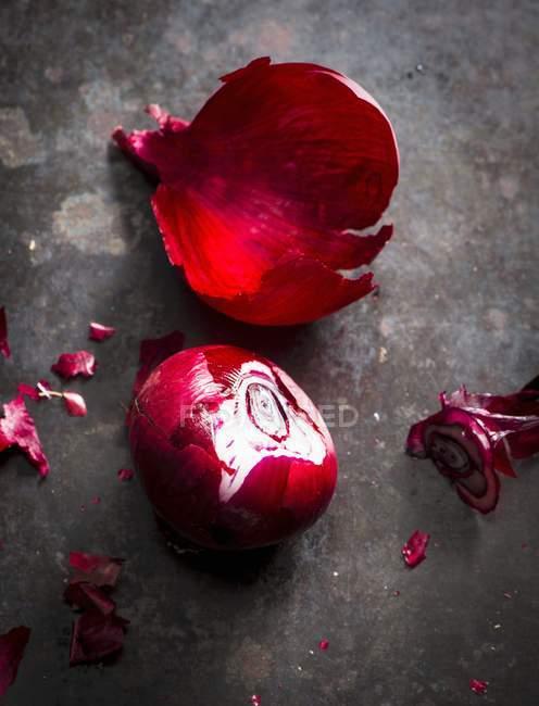 Закрыть красным луком — стоковое фото