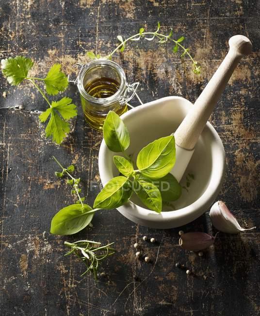 Hierbas frescas y aceite de oliva - foto de stock