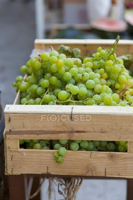 Uve verdi in cassa di legno — Foto stock