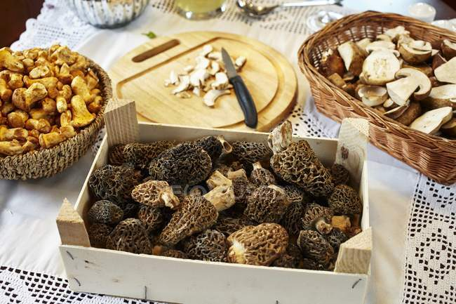 Porcini, chanterelle and morel mushrooms on a table with a white tablecloth — Stock Photo