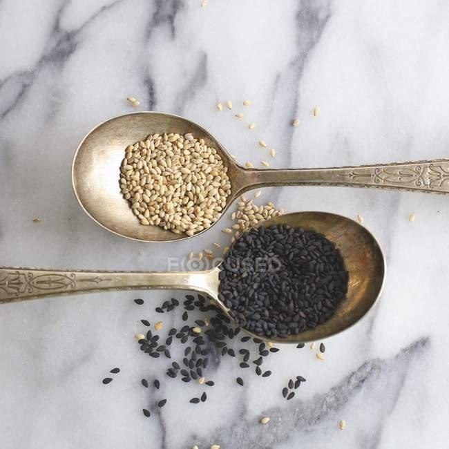 Helle und dunkle Samen — Stockfoto