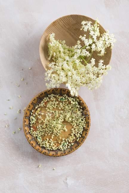 Flores de saúco frescas y secas - foto de stock