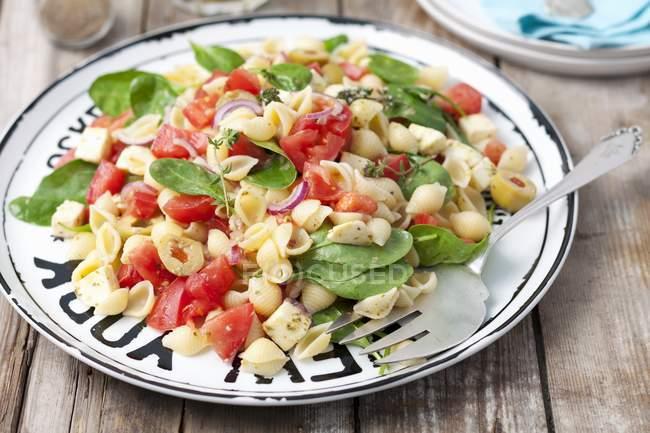 Conchiglie rigate salad — стоковое фото
