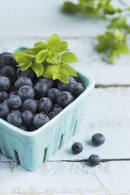 Blueberries with leaves in punnet — Stock Photo