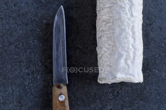 Formaggio di capra francese — Foto stock