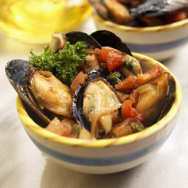 Spanische Muscheln in Schalen — Stockfoto