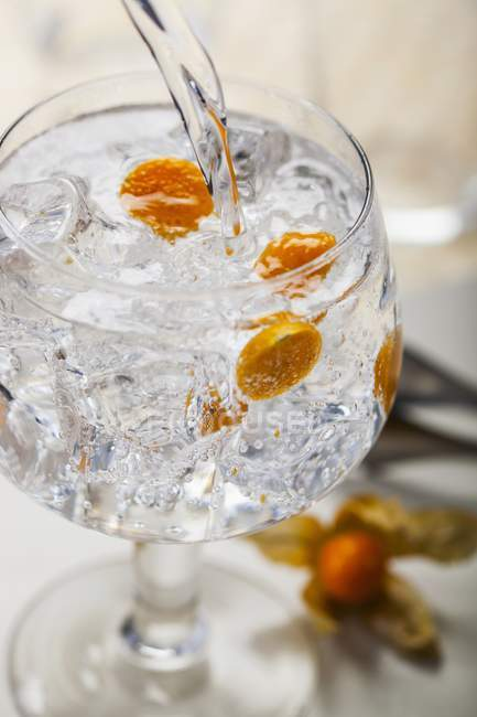 Gin and tonic with physalis — Stock Photo