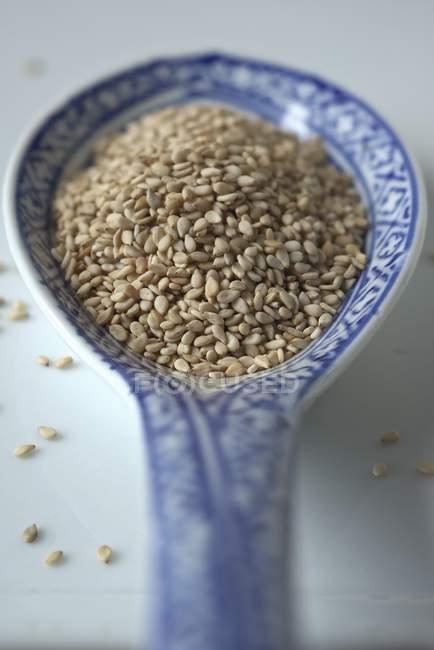 Graines de sésame sur cuillère — Photo de stock