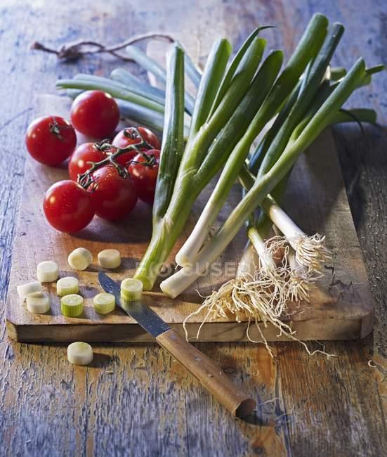 Arrangement des tomates de vigne — Photo de stock