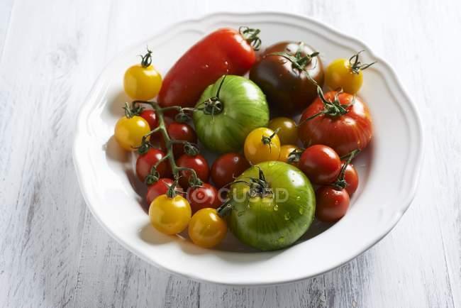 Diverses tomates colorées — Photo de stock