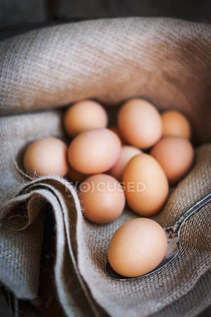 Brown eggs on piece of jute — Stock Photo
