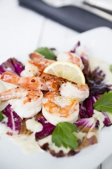 Camarão com salada de radicchio com molho de Gorgonzola — Fotografia de Stock